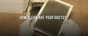 Dirty Ducts and Vents