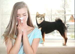 woman suffering from indoor allergies